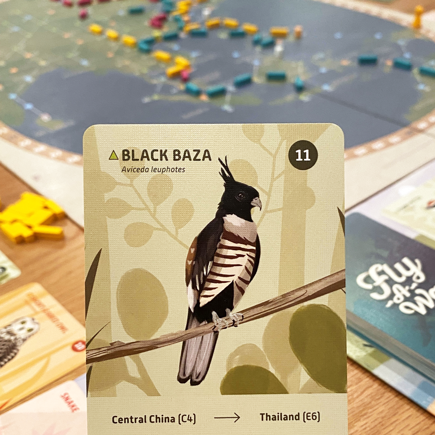 Black Baza Card from Fly-A-Way Game