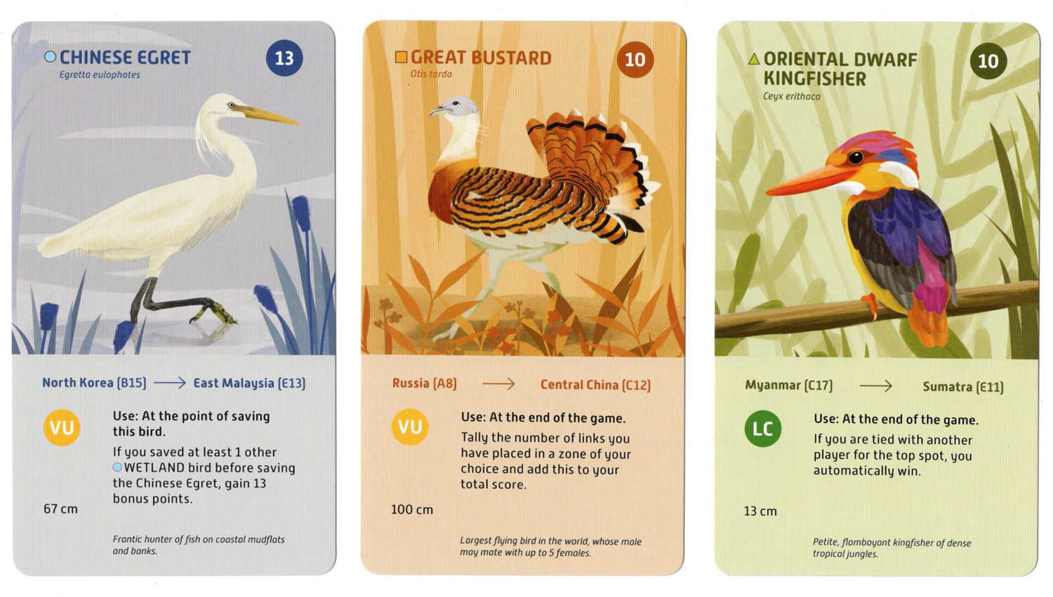 Fly-A-Way cards Subject to change © Tuber