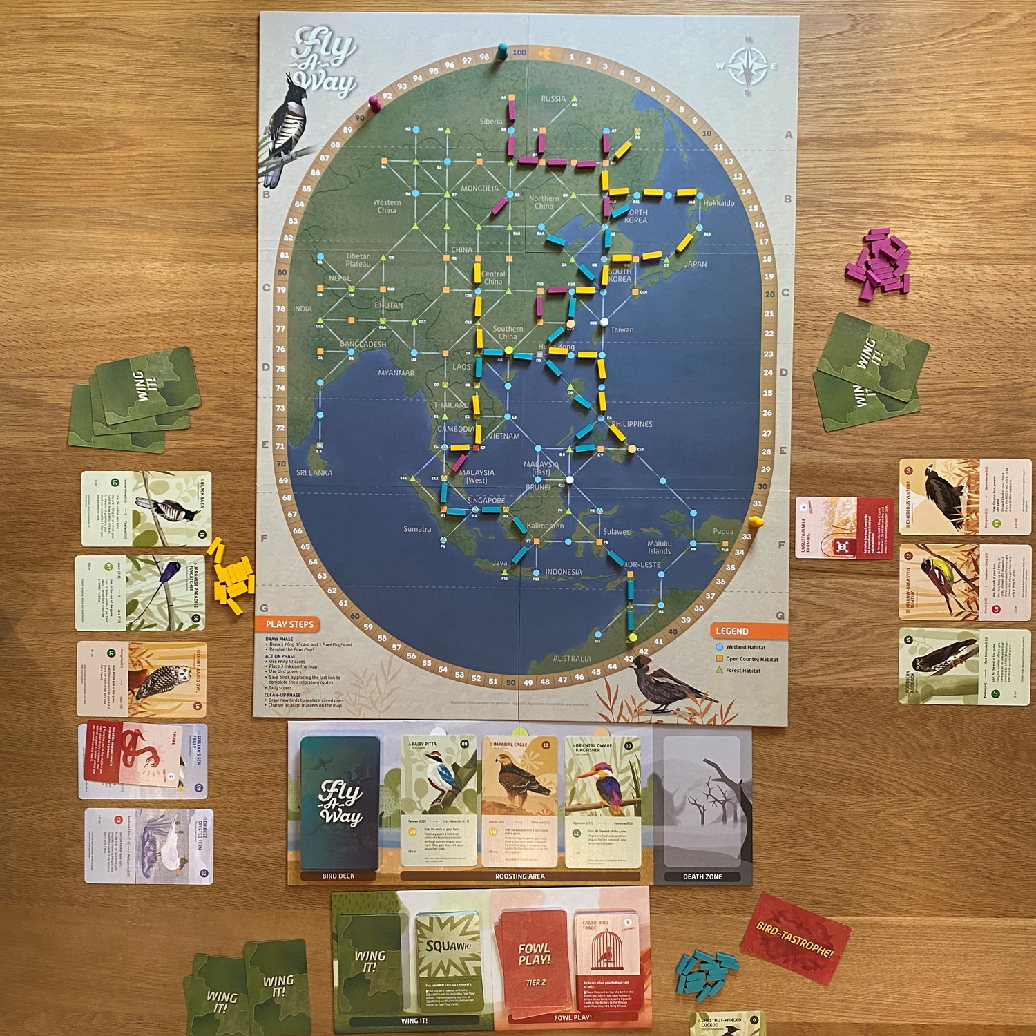 Overview of the Fly-A-WayGame Board during play